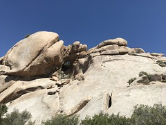 Garrets Arch 2019 April 21 (3) (PSHiker) Tags: hike greatoutdoorspalmsprings joshuatreepark wonderlandrocks