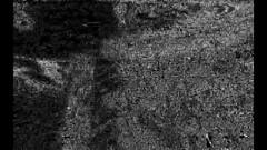 … rendering … (Lamauntagne Manual Agent) Tags: lamauntagne render rendering vr unity orbit1 enjoy your orbit monochrome black white acii ascii art gfx 3dsmax modelling quads texture mapping fluid organic wave acid raster grphic design 9000 digital lofi