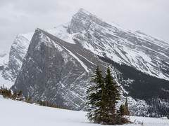 Ha Ling and Grassi (David R. Crowe) Tags: landscape mountain nature outdooractivities scrambling canmore ab canada