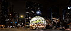 3 AM In Seattle (campmusa) Tags: amazon dome seattle sphere glasssphere nightshots nightlights nightscape panaramic spaceneedle cityscape citystreet