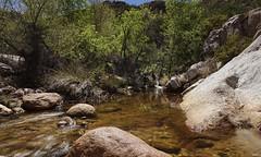 Romero Pools (Carolyn Peterson) Tags: romeropools catalinastatepark tucson arizona nature landscape longexposure water sonya7 desert hiking trails outdoors streams