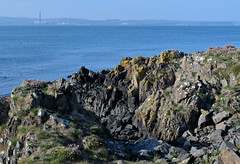 North Down Coastal Path between Holywood Seapark and Grey Point (John D McDonald) Tags: northdowncoastalpath northdowncoast coastalpath coast northdown countydown codown northernireland ni ulster nikon d3300 nikond3300 belfastlough rock rocks sea shore seashore seapark seaparkholywood holywoodseapark holywood helensbay crawfordsburncountrypark