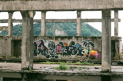 (Janeprogram) Tags: пленка 35mm filmphotography fujiindustrial100 業務用100 граффити graffiti