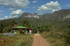 "House on a dirt road in the Pinar Del Rio Province of Cuba near Vinales, 03-29-2019 031 (Richard Hurd) Tags: vinales cuba tobacco mountains landscape guaniguanico ã""rganos mogotes valley valle coffee pinardelrio órganos"