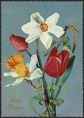 God Påske (National Library of Norway) Tags: nasjonalbiblioteket nationallibraryofnorway påskekort påske eastercards easter postkort postcards blomster flowers tulipaner påskeliljer pinseliljer