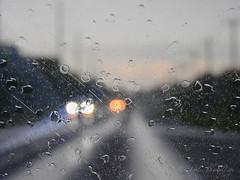 I love a rainy night (DigitalLyte) Tags: window windshield windscreen raindrops notatexture backroads headlights notthedriver road sh124