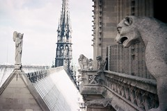 Archives. summer 2003 (VERUSHKA4) Tags: archives europe france paris notredame architecture decor historic sky ciel vue view summer travel july 2003 roof angel statue religion church cathedral eglise sculpture summertime up tower
