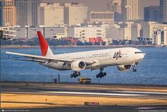 [HND.2009] #Japan.Airlines #JAL #JL #Boeing #B777 #B773 #JA8944 #awp (CHRISTELER / AeroWorldpictures Team) Tags: japanairlines jal jl japan airliner japanese japon airplane avion aircraft plane planespotting tokyo haneda airport hnd spotter christeler avgeek aviation aeroworldpictures awp team pw msn28396212 rjtt nikon d80 nikkor nef raw lightroom 70300vr landing