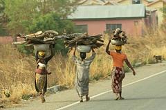 Women carrying firewood, Ghana (inyathi) Tags: westafrica ghana women firewood fuel africa