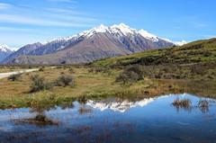 Ashburton Lakes - New Zealand (Valentin.LFW) Tags: newzealand nouvellezeland south hemisphere photographer photography canon aotearoa birds wildlife landscape auckland