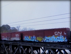 relur - sense (timetomakethepasta) Tags: relur sense freight train graffiti art cn boxcar canadian national