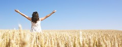 Woman in Wheat Field With Arms Outstretched (Daniel0556) Tags: 1 20s 30s abundance adult armsoutstretched armsraised bluesky brownhair carefree caucasian copyspace country countryside crop dress enjoyment enthusiasm excitement female field freedom golden grain growth horizon horizontal landscape lifestyle longhair lookingawayfromcamera one oneperson onewomanonly oneyoungwomanonly onlywomen outdoors outside people person rural scenic simplicity sky solitude standing thirties twenties waistup wheat white woman women youngadult youngwomen