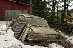 Opel Rekord B (mariburg) Tags: marode alt old sonyalpha7ii sonyfe2470mmf4zaoss auto car opel opelrekord