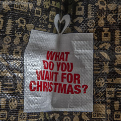 Je kunt er niet vroeg genoeg mee beginnen. (Pieter Musterd) Tags: zak tas bag christmas kerstmis pietermusterd musterd canon pmusterdziggonl nederland holland nl canon5dmarkii canon5d denhaag 'sgravenhage thehague lahaye