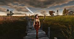 Autumn Trace (Eronmia EE) Tags: zenith