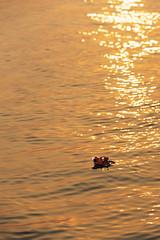 0962 Float to Eternity II (Hrvoje Simich - gaZZda) Tags: sun light water flame candle flowers river ganges varanasi india asia nikon nikond750 sigma150500563 gazzda hrvojesimich