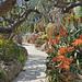Le jardin exotique de Monaco