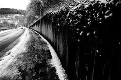 Finally the winter is over (Leica M6) (stefankamert) Tags: winter over snow wall tones textures film analog grain bokeh blur way leica m6 leicam6 kodak trix voigtländer ultron 28mm noir noiretblanc blackandwhite blackwhite