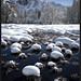 Cooks Meadow Snowballs