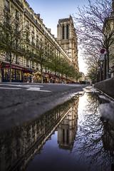 Paris, France - See you soon, Notre-Dame (pierrepphotography) Tags: notredamedeparis paris puddle reflections