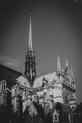 today a fragment of a very long history; with the hope of rising from destruction (ignacy50.pl) Tags: architecture cathedral notredame paris france blackandwhite documentary old roof tower travel