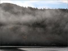Fog Drifting Up the Arm (Felip1) Tags: 194143191br