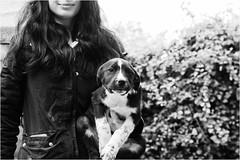 lovers (andaradagio) Tags: littledoglaughedstories littledoglaughednoiret andaradagio bianconero bw canon dog cane miglioramicodelluomo nadiadagaro