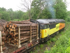 56113 Teigngrace May 2014 (clivepsmithmarch1960) Tags: 56113 teigngrace chirklogs