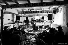 Flo Chmod live @ Private (Cologne, Allemagne) 28/03/2019 (YAOF Design) Tags: flochmod folksongsofstrasbourg private 2803 280319 deafrockrecords folk concert live cologne köln allemagne germany deutschland canon80d tokinaatx1116mmf28prodxii yaofdesign yaof design
