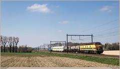 TUC-Rail 5539 + INFRABEL 6315 @ Saintes (Wouter De Haeck) Tags: belgië belgique belgien infrabel l94 blandain halle brabantwallon waalsbrabant saintes tubize tucrail hld55 bn labrugeoiseetnivelles gm generalmotors hld63 cargo güterzug traindemarchandise freighttrain weedfree onkruidverdelging traindedésherbage mouscron moeskroen