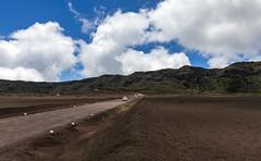 Route du Volcan, Reunion / Дорога на Вулкан, Реюньон (dmilokt) Tags: природа nature пейзаж landscape гора mountain вулкан volcan лава lava дорога road dmilokt