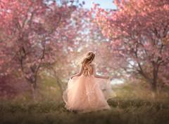 Enchanted Spring ({jessica drossin}) Tags: jessicadrossin woman pretty spring girl child dress pink peach wind trees grass season wwwjessicadrossincom