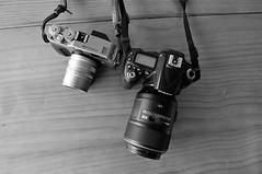 Partners : * Contax G1/Sonner 90mm 2.8, * Nikon D90/micro 105mm 2.8g (Yiing Juii) Tags: contax g1 sonner nikon d90 micro105g