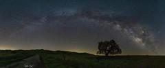 Way Too Milky!!! (inder81@ymail.com) Tags: sony1635gm sonya7riii a7riii sony inderjeetsingh nightsky california milkyway