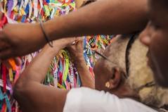 Bahia (Rosilda Cruz.) Tags: gamboa culturabaiana bahia rosildacruz