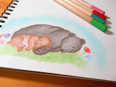 Mother Bear and Cub Colored Pencil Illustration (FriendlyHollow) Tags: bears cubs babyanimals cuteanimals illustration drawing sketch woodlandillustration wildflowers poppy flowers coloredpencils grizzlybear prettydrawing floraldesign