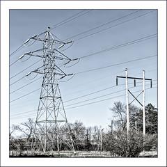 Parallel Lines (Timothy Valentine) Tags: 0419 telegraphtuesday large bleached pole pylon 2019 westbridgewater massachusetts unitedstatesofamerica