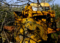 'Sleeping Giant' (Andrew@OxfordPart2) Tags: sleeping giant bulldozer scrap yard junk decay rust overgrown andover steam natural light abstract