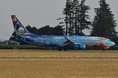 C-GWSV (LAXSPOTTER97) Tags: westjet boeing 737 737800 cgwsv cn 37158 ln 2841 walt disney frozen paint scheme livery aviation airport airplane cyxx