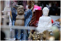 Buddha Is Everywhere - Public Market XT6766e (Harris Hui (in search of light)) Tags: harrishui fujixt1 digitalmirrorlesscamera fuji fujifilm vancouver richmond bc canada vancouverdslrshooter mirrorless fujixambassador xt1 fujixcamera fujixseries fujix fujixf50140mmf28 fujizoomlens buddha figure enlightenment awakening wisdom buddhism market richmondpublicmarket statue sculpture