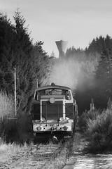 Promenade hivernale (videostrains) Tags: cfhf chemin de fer haut forez train touristique neige sembadel bb63705 la chaise dieu esticareilles