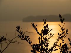 Fins el cap (.carleS) Tags: caeduiker olympus omd em5 ii posta sol sunset atardececer puesta de sun mar sea mediterrani medirterráneo mediterranean golden gold daurat dorado