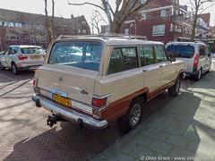 Den Haag, maart 2019 (Okke Groot - in tekst en beeld) Tags: 65ggt6 breitnerlaan sidecode7 denhaag jeepwagoneer nederland