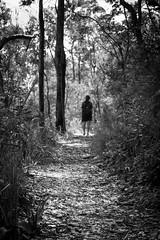 Into the distance (spannerino) Tags: australia blackandwhite contrast d7100 dof dx girl landscape monochrome nikon outdoor path tree kitlens walking sunshinecoast glasshousemountains hinterland