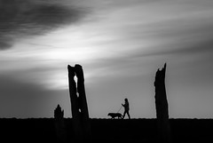 A Moonlit Walk (Matthew Bickham) Tags: thornham norfolk silhouette walking stroll