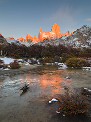 Frostbitten Fitz Roy (Jerzy Orzechowski) Tags: patagonia sunrise fitzroy forest pattern reflections texture moody argentina driftwood orange ice