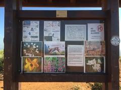 San Elijo Trail Info (hinxlinx) Tags: socal ca southern california southerncalifornia sun sky san elijo marcos trail info wildlife
