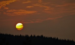 (Bushcraft.Eure) Tags: sunset sundown tree nature sony light sky clouds landscape coucher de soleil ciel pelouse arbre forêt bois crépuscule sonya6000 sonye epz18105mmf4goss 18105mm red orange sweet velvet field alpha pink blue horizon avion paysage hypnotise cloud nuage nuageux skylover foret forest cantal auvergne sonynex3n nex3 nex3n e pz 1650mm f3556 oss f4 sun