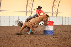 Hadley (wysharp) Tags: barrelracing cowgirl horse