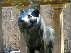 Berlin - Museumsinsel, Löwenskulptur (www.nbfotos.de) Tags: berlin museumsinsel löwe lion statue skulptur sculpture